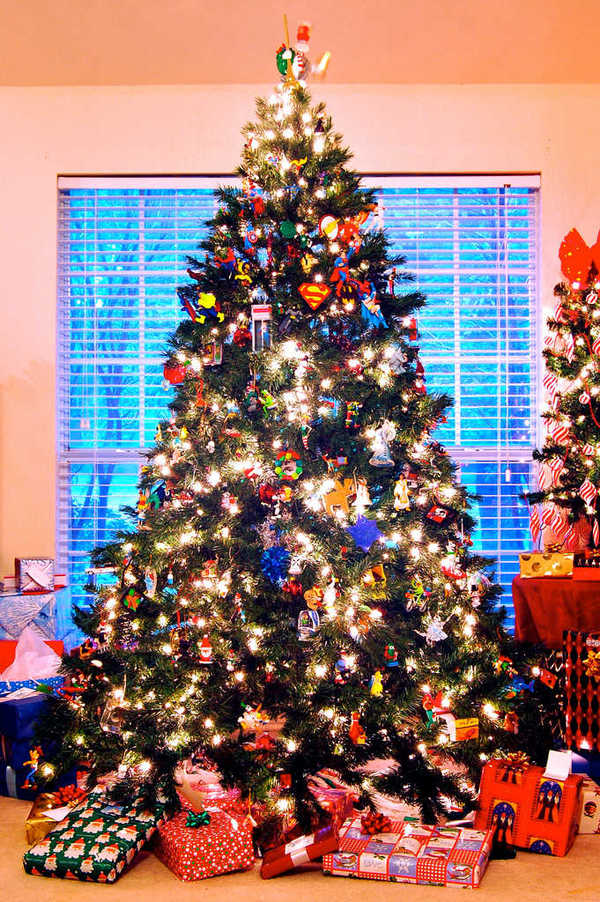 Photo of two Christmas trees and presents