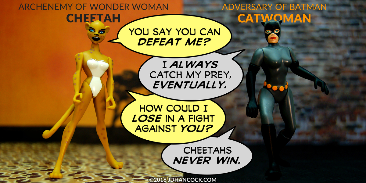 PopFig toy comic with Cheetah and Catwoman.