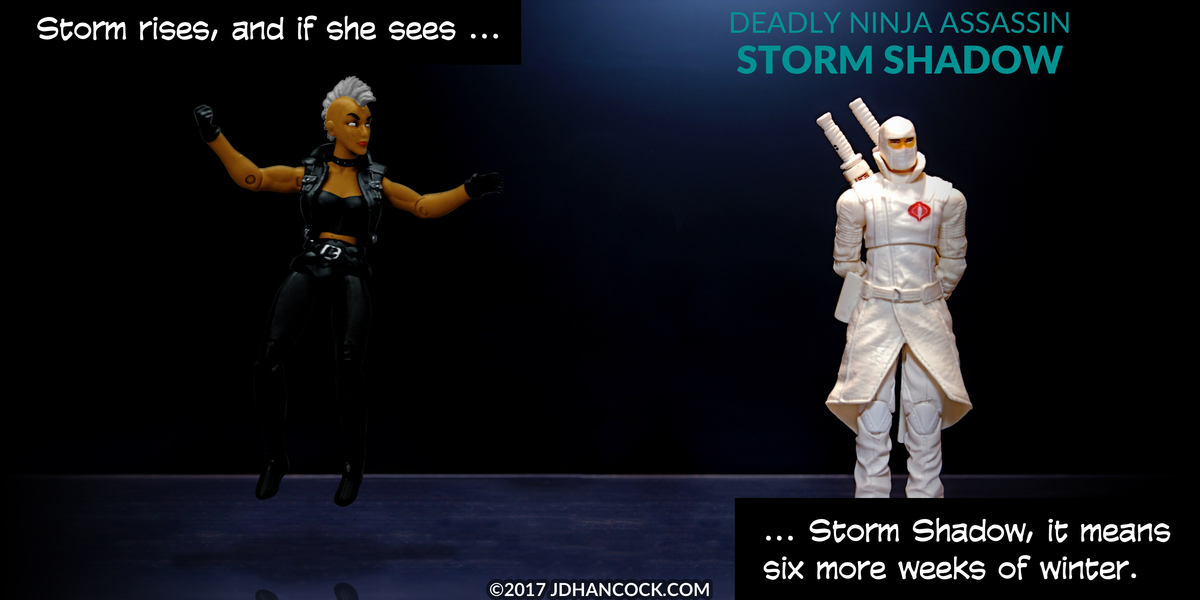 PopFig toy comic with Storm and Storm Shadow.