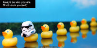 PopFig toy comic with ducks and one with a stormtrooper helmet.