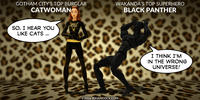 PopFig toy comic with Catwoman and Black Panther.